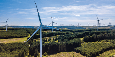 Connected wind farm